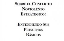 (ESP) Sobre el Conflicto Noviolento Estratégico Entendiendo sus Principios Básicos (Robert L. Helvey)