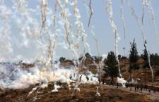 Abordar la por: Enfortiment de l'alternativa no violenta en el Territori Palestí. Establiment d'un Sistema d'Alerta Primerenca de Conflictes