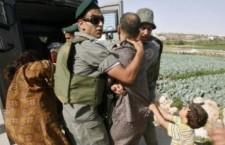 La plataforma Avaaz comença una campanya per la lluita no violenta a Palestina