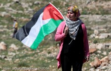 Statement: NOVACT rejects the attacks on two Palestinian Human Right Defenders during their visit to Barcelona