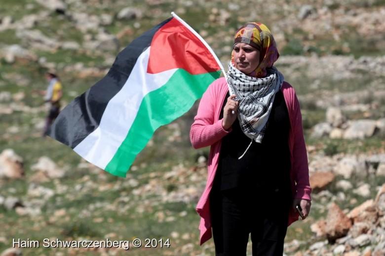 Comunicado: NOVACT muestra su repulsa ante los ataques lanzados a los Comités Populares palestinos