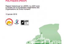 Informes paral·lels sobre drets civils i polítics al Magreb