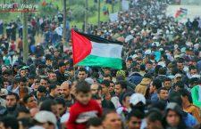 Comunicado de Novact ante la masacre por parte del Estado de Israel el Día de la Tierra en Palestina